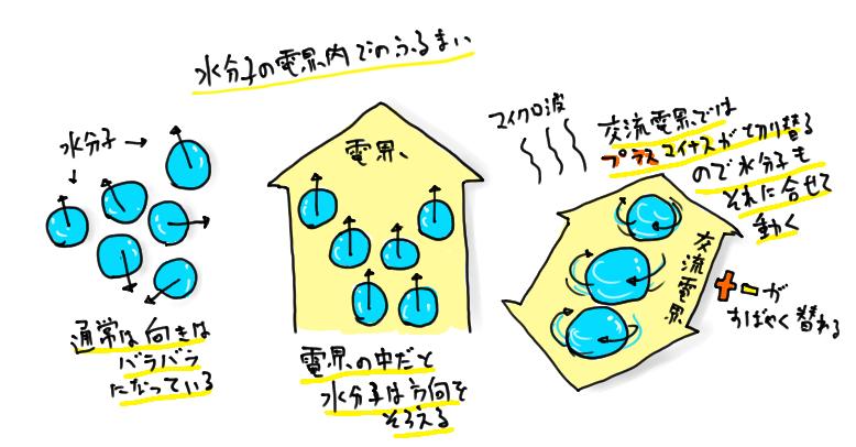 水分子と電界の関係