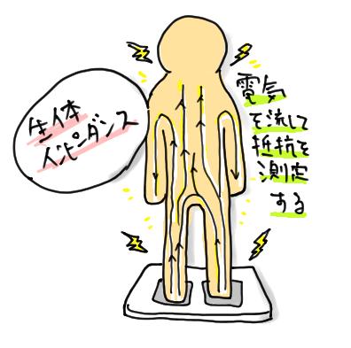 生体インピーダンス