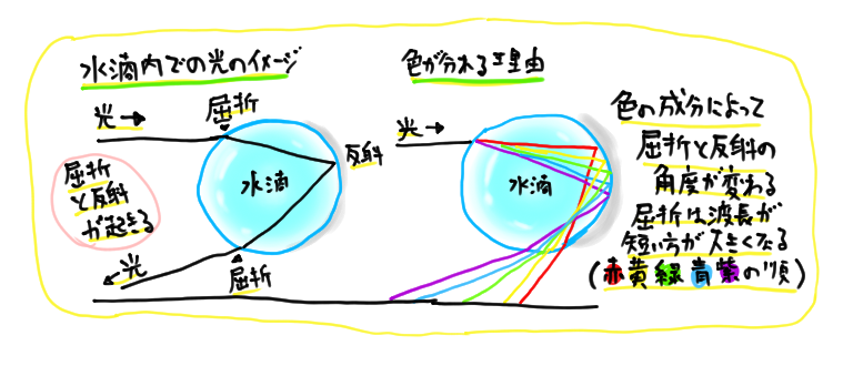 屈折と反射