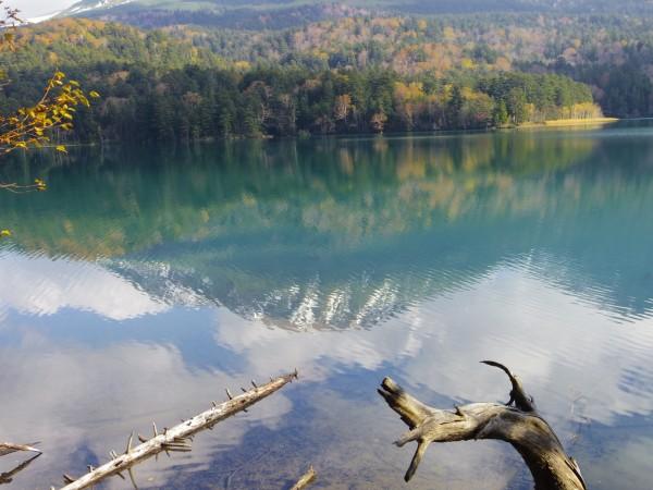 湖面はグリーンに近い色になっている